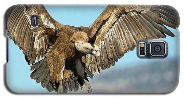 Griffon Vulture Flying Galaxy S5 Case by Nicolas Reusens