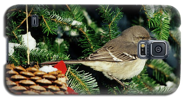 Northern Mockingbird (mimus Polyglottos Galaxy S5 Case by Richard and Susan Day