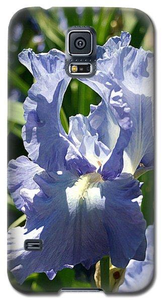Purple Bearded Iris Galaxy S5 Case by Ellen Henneke