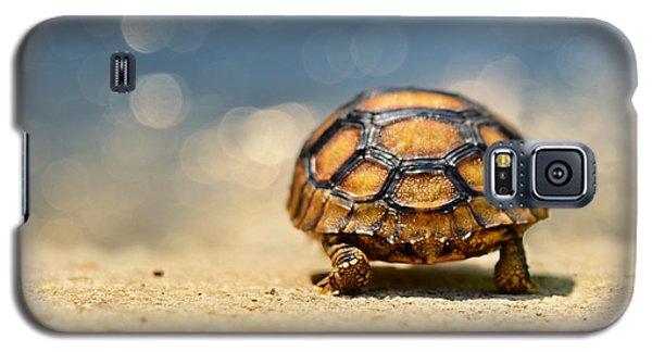 Road Warrior Galaxy S5 Case by Laura Fasulo