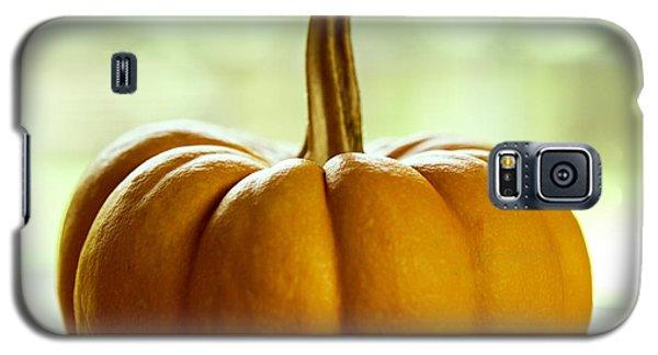 Small Orange Pumpkin Galaxy S5 Case by Iris Richardson