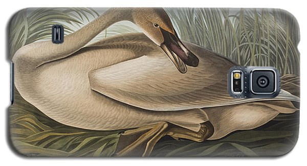 Trumpeter Swan Galaxy S5 Case by John James Audubon