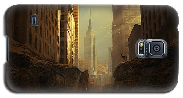 Buy Galaxy S5 Cases - 2146 Galaxy S5 Case by Michal Karcz