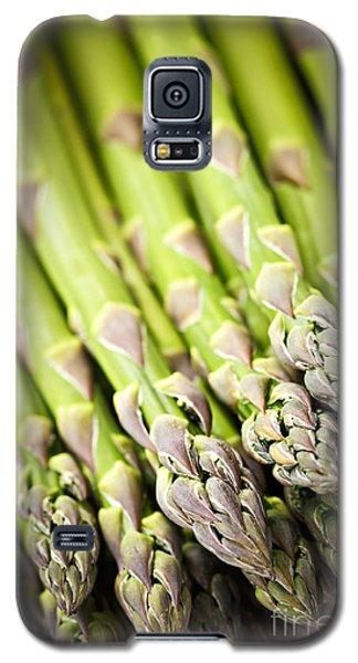 Asparagus Galaxy S5 Case by Elena Elisseeva