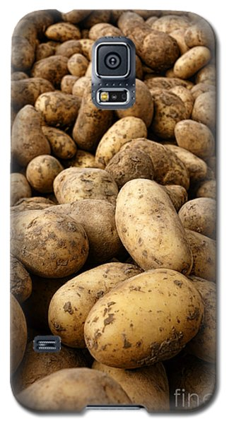 Potatoes Galaxy S5 Case by Olivier Le Queinec