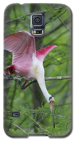 Usa, Louisiana, Lake Martin Galaxy S5 Case by Jaynes Gallery