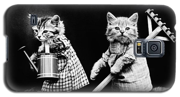 Frees Kittens, C1914 Galaxy S5 Case by Granger