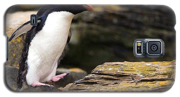 Rockhopper Penguin Galaxy S5 Case by John Shaw