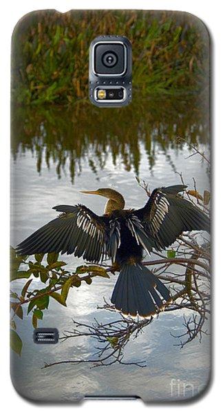 Anhinga Galaxy S5 Case by Mark Newman
