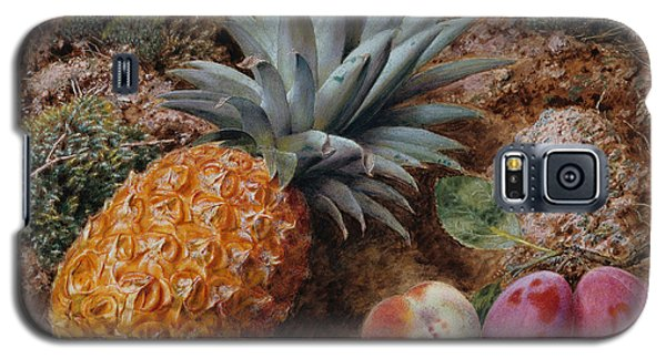A Pineapple A Peach And Plums On A Mossy Bank Galaxy S5 Case by John Sherrin