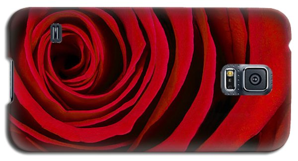A Rose For Valentine's Day Galaxy S5 Case by Adam Romanowicz