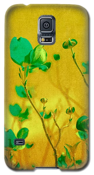 Flower Galaxy S5 Cases - Abstract Dogwood Galaxy S5 Case by Bonnie Bruno
