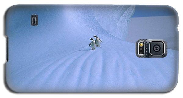 Adelie Penguins On Iceberg Antarctica Galaxy S5 Case by Peter Sinden