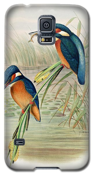 Alcedo Ispida Plate From The Birds Of Great Britain By John Gould Galaxy S5 Case by John Gould William Hart