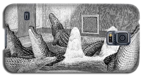 Alligators In Captivity Galaxy S5 Case by Science Photo Library