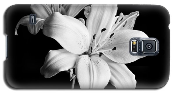 Still Life Galaxy S5 Cases - Asian Lilies 1 Galaxy S5 Case by Sebastian Musial