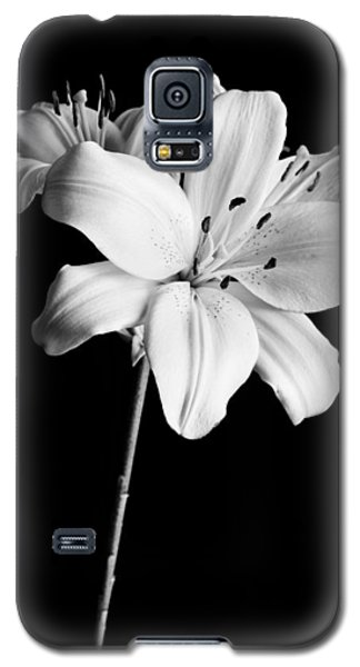 Still Life Galaxy S5 Cases - Asian Lilies 2 Galaxy S5 Case by Sebastian Musial