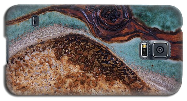 Ceramics Galaxy S5 Cases - Aura Galaxy S5 Case by Gail Frasier