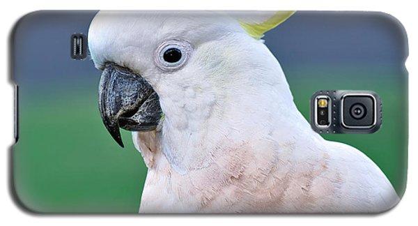 Australian Birds - Cockatoo Galaxy S5 Case by Kaye Menner