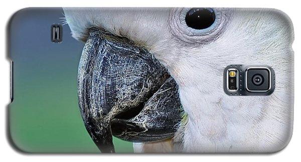 Australian Birds - Cockatoo Up Close Galaxy S5 Case by Kaye Menner