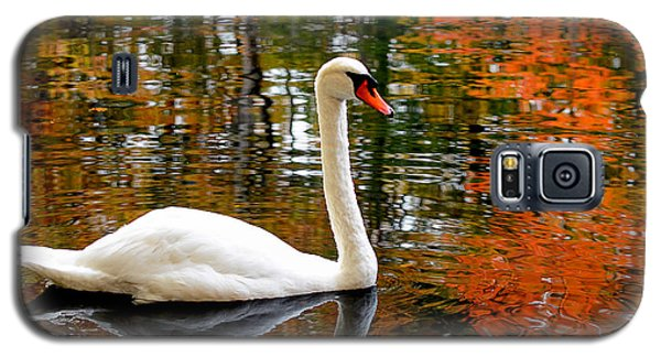 Autumn Swan Galaxy S5 Case by Lourry Legarde