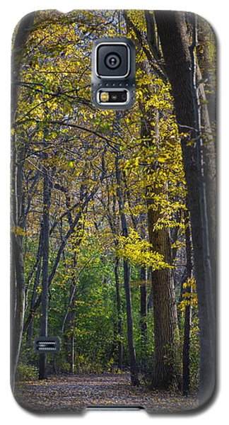 Yellow Galaxy S5 Cases - Autumn Trees Alley Galaxy S5 Case by Sebastian Musial