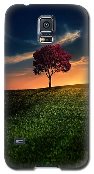Awesome Solitude Galaxy S5 Case by Bess Hamiti