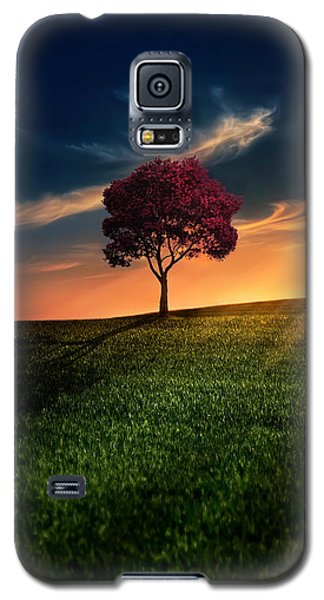 Buy Galaxy S5 Cases - Awesome Solitude Galaxy S5 Case by Bess Hamiti