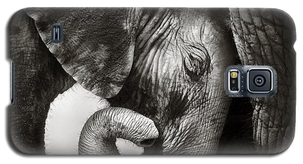 Baby Elephant Seeking Comfort Galaxy S5 Case by Johan Swanepoel