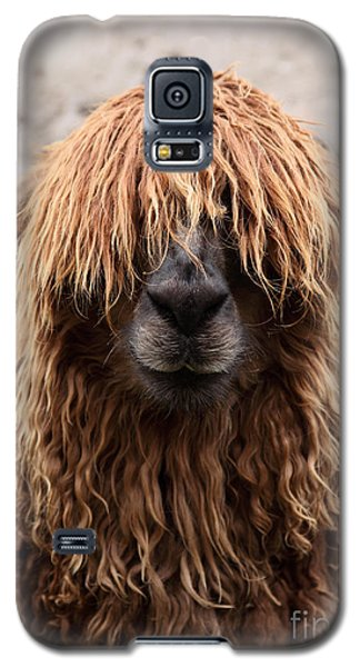 Bad Hair Day Galaxy S5 Case by James Brunker