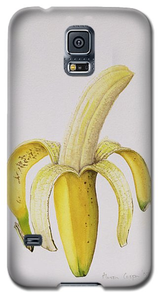 Banana Galaxy S5 Case by Alison Cooper