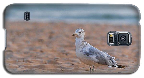 Beach Patrol Galaxy S5 Case by Sebastian Musial