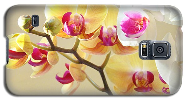 Beautiful Orchids Floral Art Prints Orchid Flowers Galaxy S5 Case by Baslee Troutman