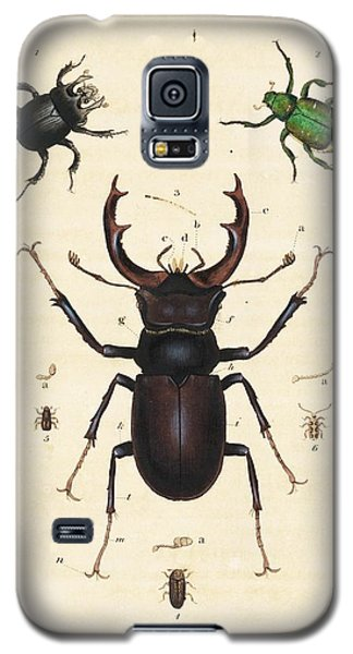 Beetles Galaxy S5 Case by King's College London