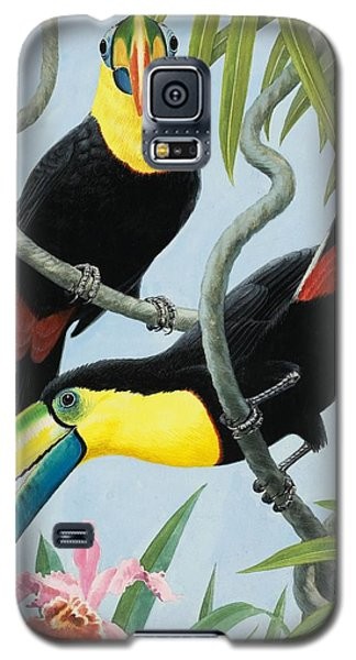 Big-beaked Birds Galaxy S5 Case by RB Davis