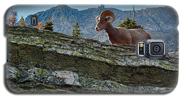 Bighorn Galaxy S5 Case by Sebastian Musial