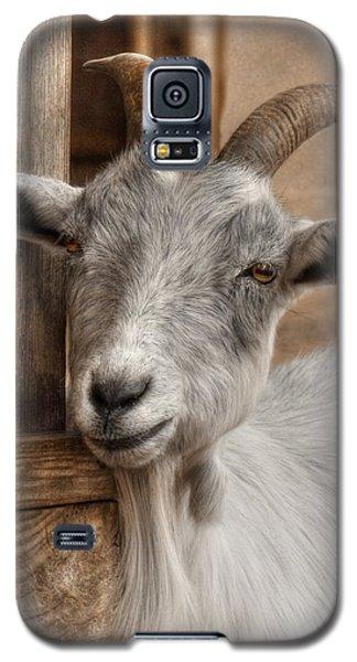 Billy Goat Galaxy S5 Case by Lori Deiter