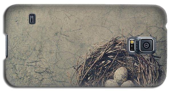Pyrography Galaxy S5 Cases - Bird Nest Galaxy S5 Case by Jelena Jovanovic