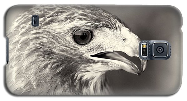 Bird Of Prey Galaxy S5 Case by Dan Sproul