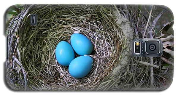 Birds Nest American Robin Galaxy S5 Case by Christina Rollo