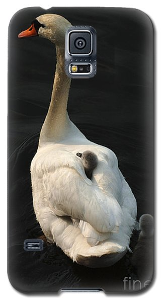 Birds Of A Feather Stick Together Galaxy S5 Case by Bob Christopher
