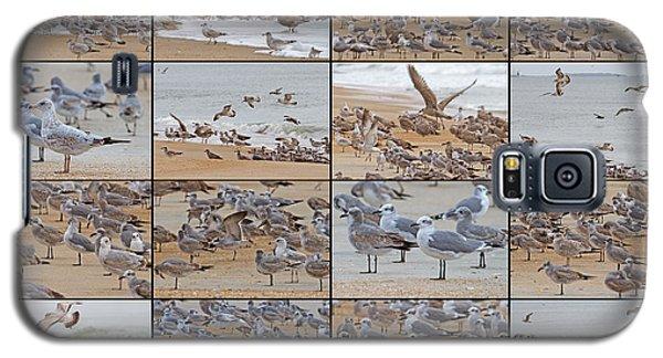 Birds Of Many Feathers Galaxy S5 Case by Betsy Knapp
