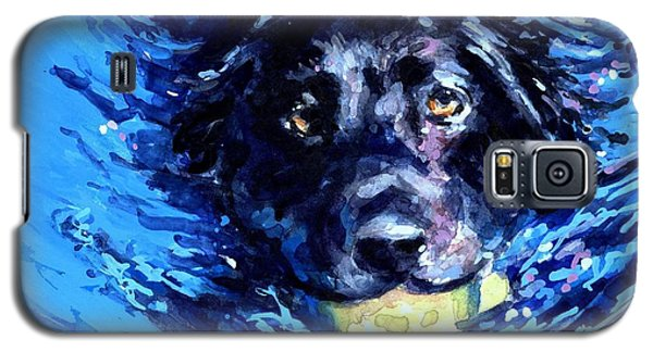 Black Lab  Blue Wake Galaxy S5 Case by Molly Poole
