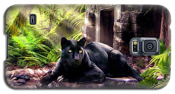Black Panther Custodian Of Ancient Temple Ruins  Galaxy S5 Case by Regina Femrite