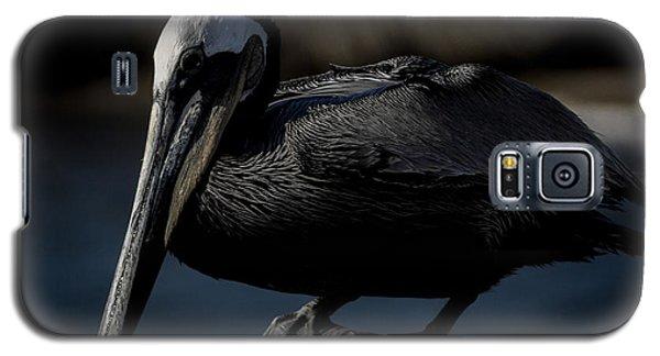 Black Pelican Galaxy S5 Case by Ernie Echols