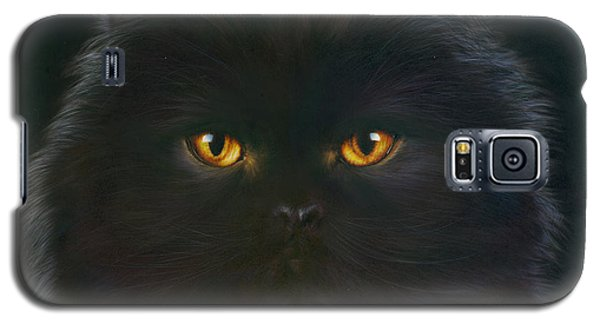 Portraits Galaxy S5 Cases - Black Persian Galaxy S5 Case by Andrew Farley