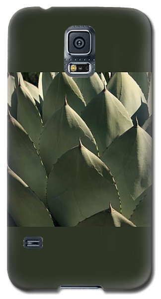 Blue Aloe Galaxy S5 Case by Ellen Henneke