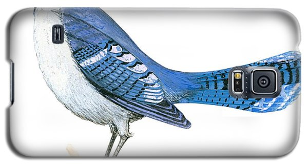 Blue Jay  Galaxy S5 Case by Anonymous