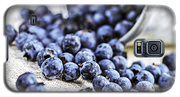Summer Galaxy S5 Cases - Blueberries Galaxy S5 Case by Elena Elisseeva