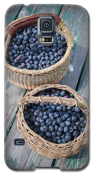 Blueberry Baskets Galaxy S5 Case by Edward Fielding